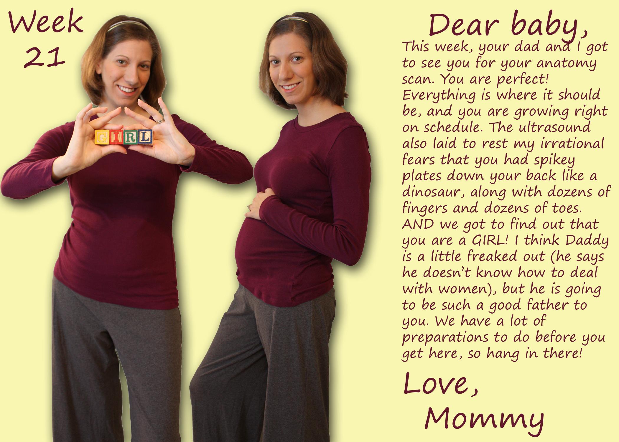 21 Weeks Pregnant and She's a Girl! - Joyful Abode