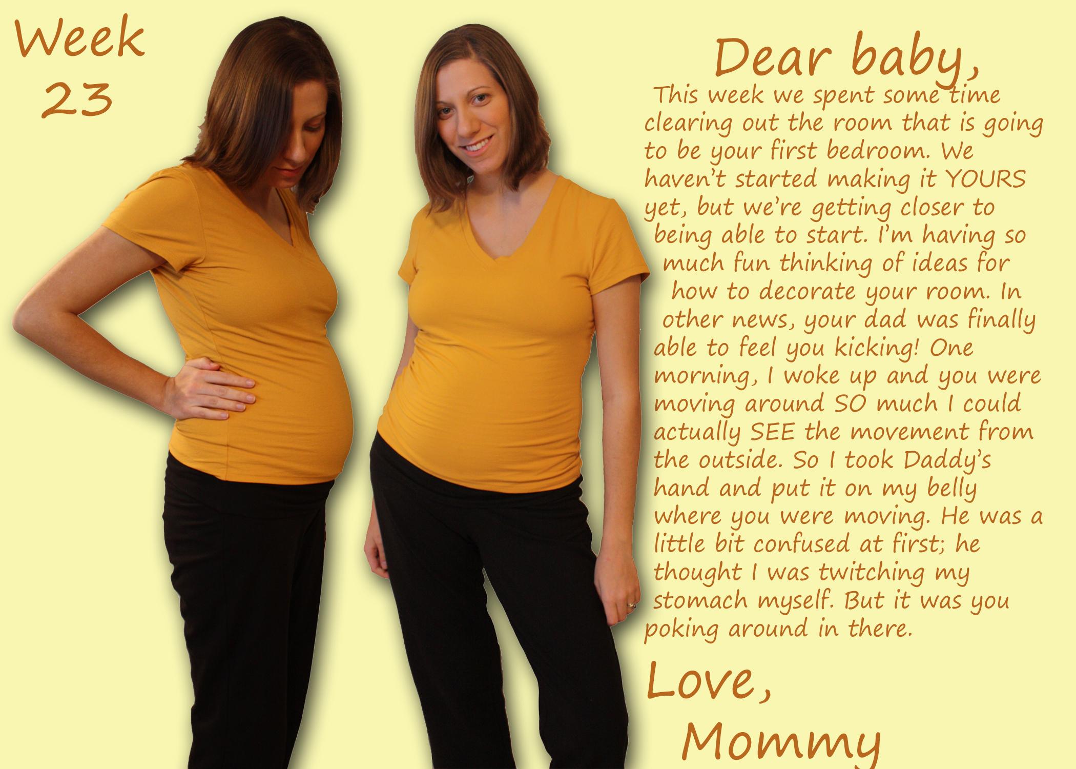 23 Weeks Pregnant - Joyful Abode