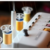 A Serge of Energy – With My Brother Serger