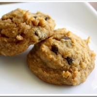 Grain-Free Gluten-Free Cookies of Awesomeness
