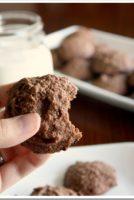 Grain-Free Recipe: Chocolate Chocolate Chip Cookies