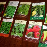 Spring is Coming – Starting Seeds for Veggies
