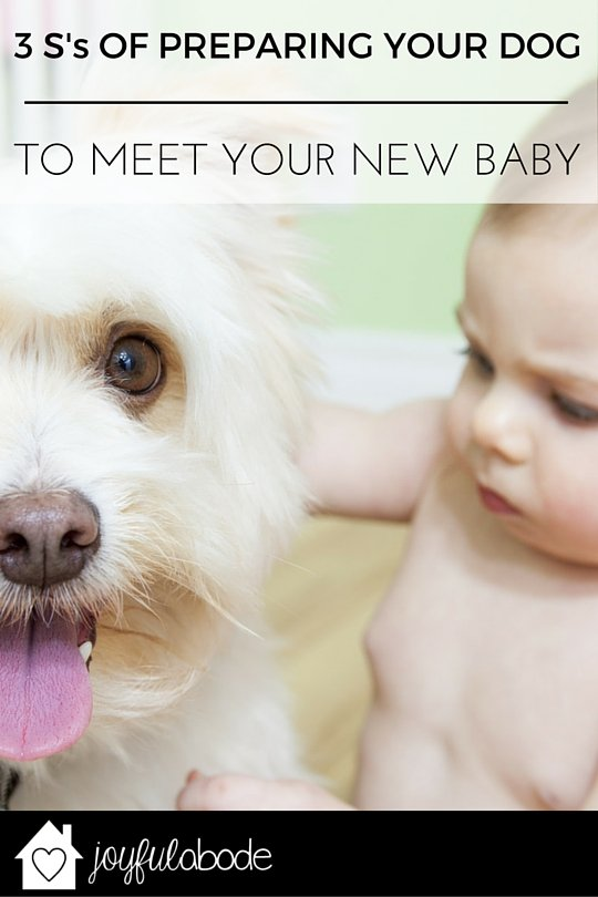 The 3 S's of preparing your dog to meet your new baby. These are great tips - pin if you're pregnant.