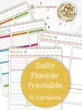 Homemaking Organization - Daily Planner Printable download - Grab this PDF and prepare for your awesome day !
