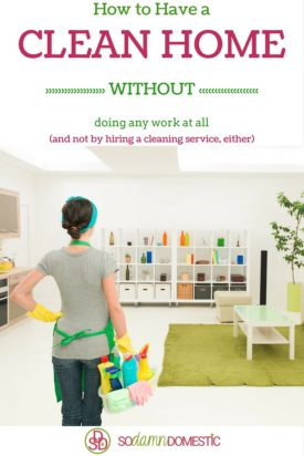 How to Have a Clean Home (Without doing any work at all)
