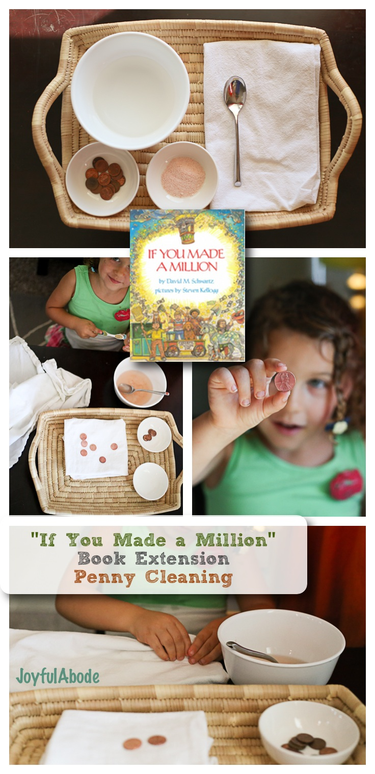 If You Made a Million Book Extension Montessori Penny Cleaning Activity