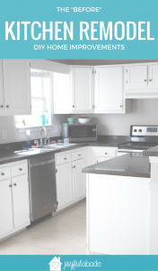 We're remodeling our kitchen ourselves. It's kind of a mini DIY kitchen remodel, since we aren't tearing out the cabinets or changing the layout of the kitchen or anything like that. But we have a lot planned, and it's going to be amazing!