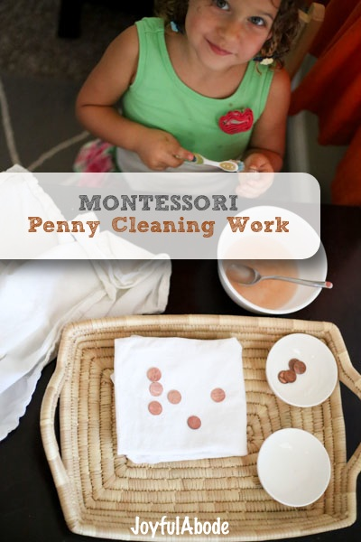 Montessori Penny Cleaning Work