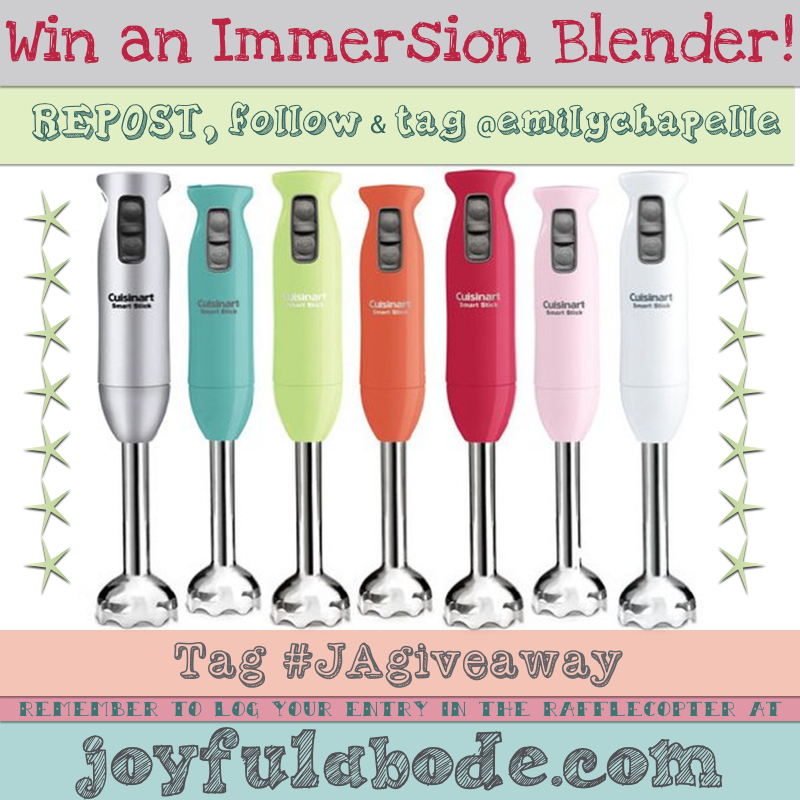 immersion blender IG entry picture
