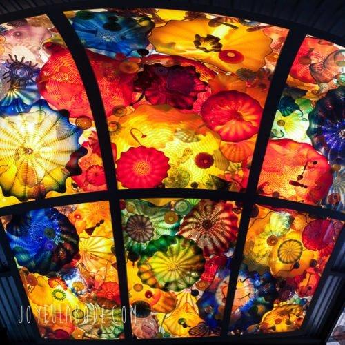 Dale Chihuly Persian Ceiling San Antonio Museum of Art SAMA