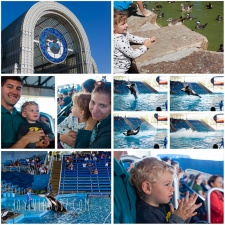 Sea World With Kids – San Antonio, TX