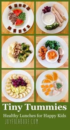 Tiny Tummies – Lunches for Toddlers